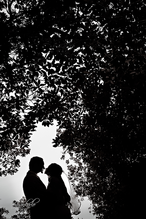 Jhankarlo Photography-16