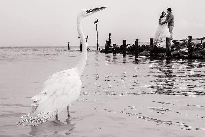 Jhankarlo Photography-13