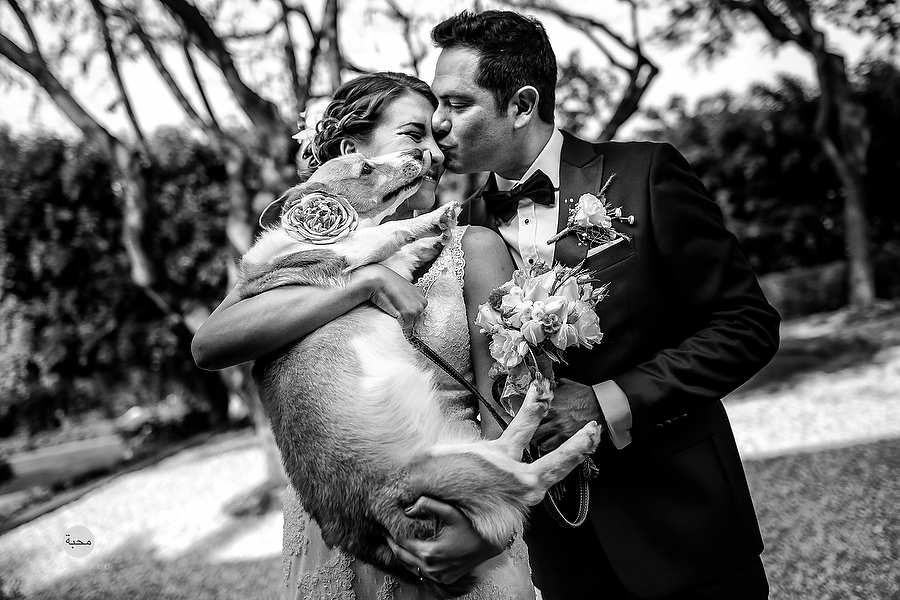 Destination Wedding Photographer-10